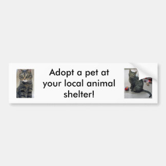 Adopt a Pet Bumper Sticker