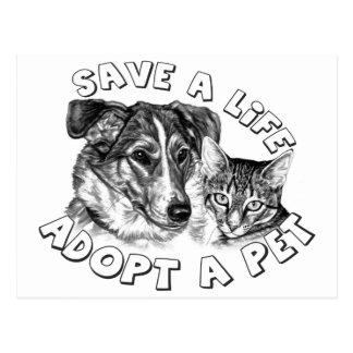 Adopt a Pet Postcard