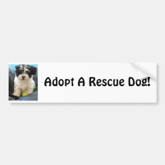Adopt A Rescue Dod! Bumper Sticker