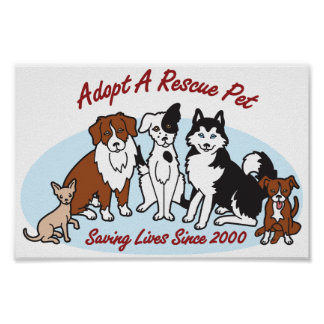 """""""Adopt a Rescue Pet"""" Poster"""