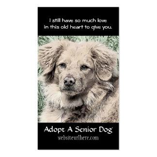Adopt a Senior Dog Animal Rescue Business Card