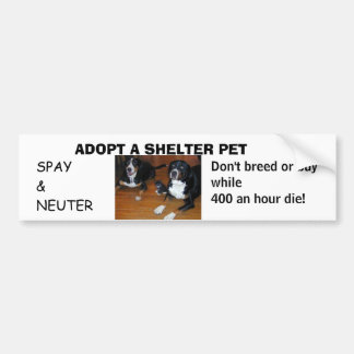 ADOPT A SHELTER PET, spay neuter Bumper Sticker