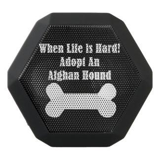 Adopt An Afghan Hound