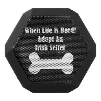 Adopt An Irish Setter