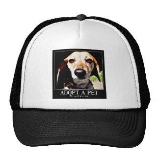 Adopt apet We need love too_ Mesh Hat