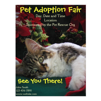 Adopt Cat Dog Animal, Rescue a Pet, Save a Life Full Color Flyer