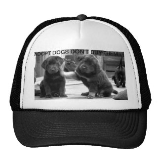 adopt dogs don't buy them hat
