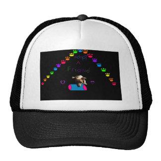 Adopt Mesh Hat