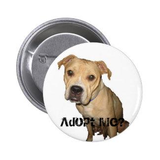 Adopt Me button