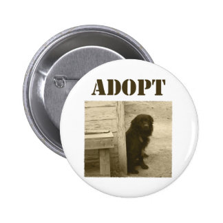 Adopt stray dog 6 cm round badge