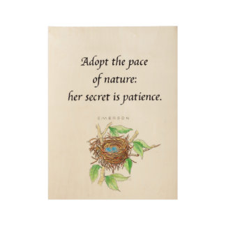 Adopt the Pace of Nature Poster Wood Poster