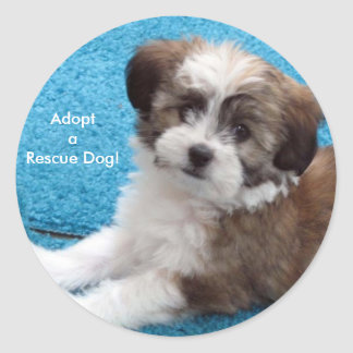 AdoptaRescue Dog! Classic Round Sticker