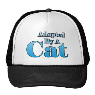 Adopted by a Cat Cap
