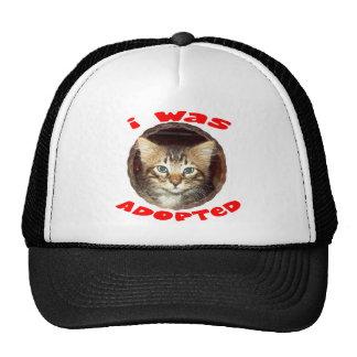 Adopted Kitten Mesh Hat