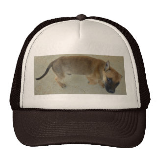 Adopted Pup Cap