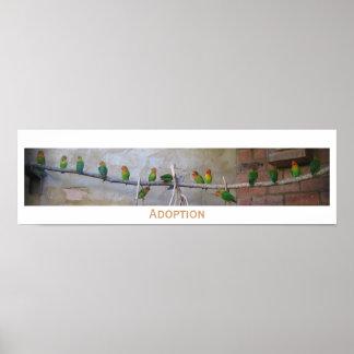 Adoption Photograph Print