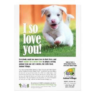 Adoption Poster - Little Rock Animal Village 21.5 Cm X 28 Cm Flyer