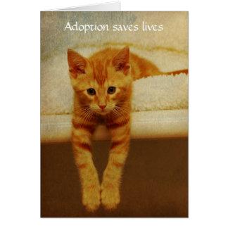 Adoption Save Lives Orange Kitten Notecard Cards