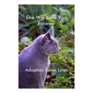 Adoption Saves Lives-Cats Poster