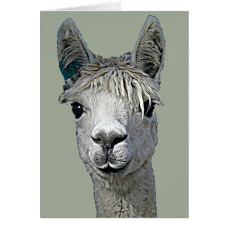 Adorable Alpaca Card