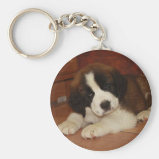 Adorable and Sweet St. Bernard Puppy Basic Round Button Key Ring