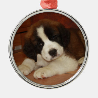 Adorable and Sweet St. Bernard Puppy Christmas Ornament