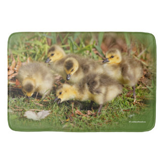 Adorable Baby Canada Geese on the Grass Bath Mat