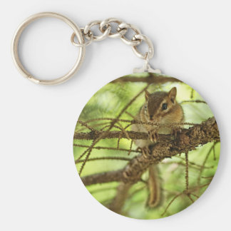 Adorable Baby Chipmunk Hiding in a Pine Tree Key Chains