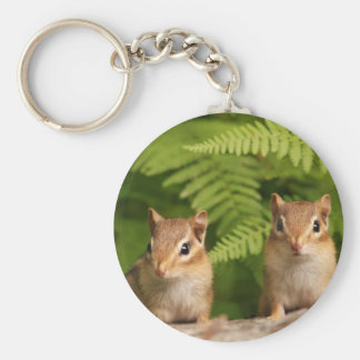 Adorable Baby Chipmunk Siblings Basic Round Button Key Ring