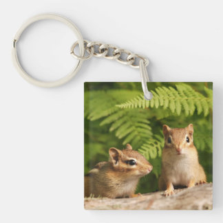 Adorable Baby Chipmunk Siblings Single-Sided Square Acrylic Key Ring