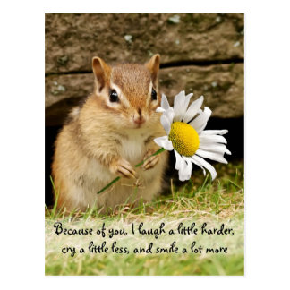 Adorable Baby Chipmunk with Friendship Quote Postcard