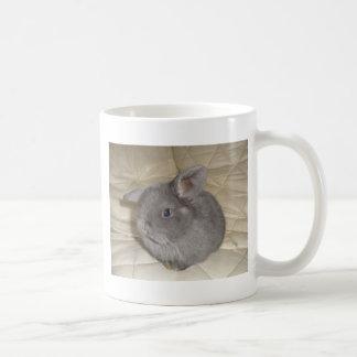 Adorable Baby Mini Lop Basic White Mug