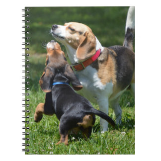 Adorable Beagle Puppy and Mom Notebook
