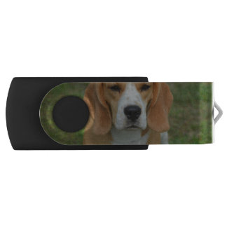 Adorable Beagle USB Flash Drive