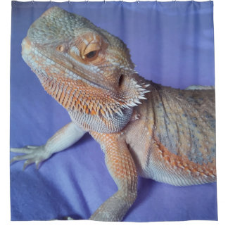 Adorable Bearded Dragon Up Close Picture Blue Shower Curtain