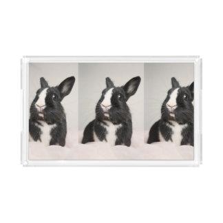 Adorable Black and White Bunny Rabbit Acrylic Tray