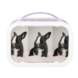 Adorable Black and White Bunny Rabbit Lunch Box