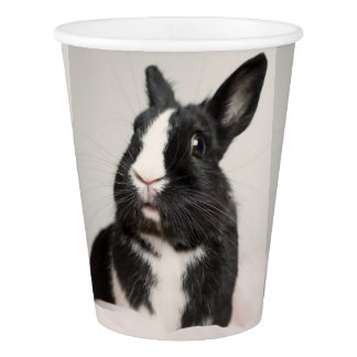 Adorable Black and White Bunny Rabbit Paper Cup