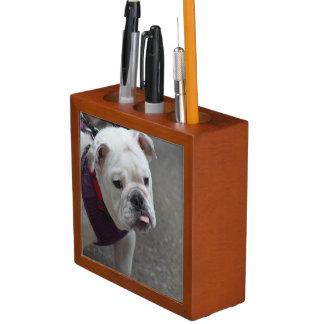 Adorable Bulldog Desk Organiser
