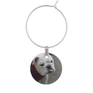 Adorable Bulldog Wine Charm