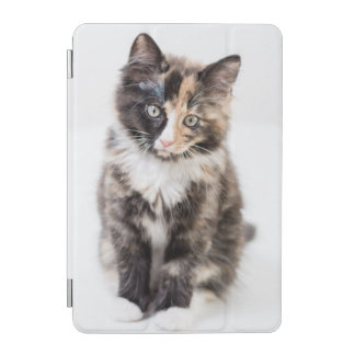 Adorable Calico Kitten iPad Mini Cover