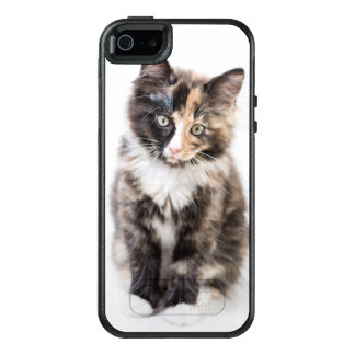 Adorable Calico Kitten OtterBox iPhone 5/5s/SE Case