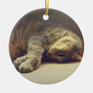 Adorable Cat Christmas Ornament