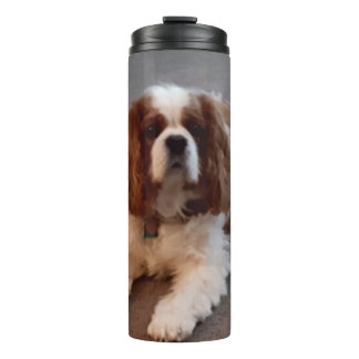 Adorable Cavalier King Charles Spaniel Thermal Tumbler