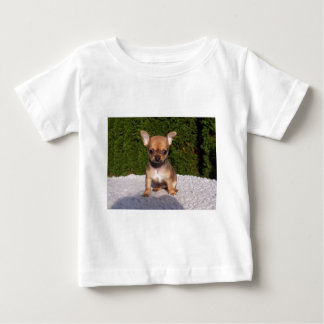 Adorable Chihuahua dog standing on a green lawn Baby T-Shirt