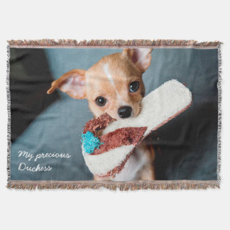 Adorable Chihuahua Photo Throw Blanket