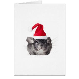 Adorable Chinchilla Santa Model Greeting Card