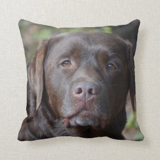 Adorable Chocolate Labrador Retriever Cushion