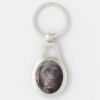 Adorable Chocolate Labrador Retriever Silver-Colored Oval Metal Keychain