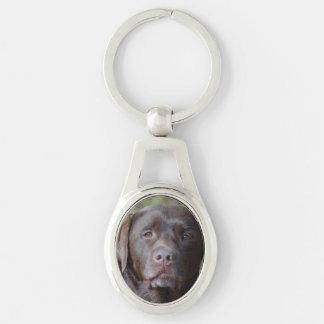 Adorable Chocolate Labrador Retriever Silver-Colored Oval Key Ring
